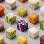 food-cubes-raw-lernert-sander-volkskrant-6