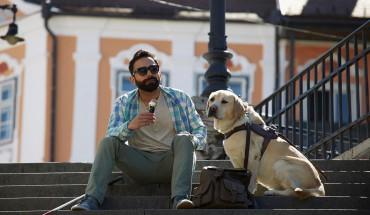 Kreji ti záda, kamaráde: Slepci utekl vodící pes, co se stalo poté?