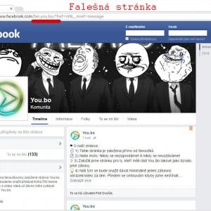 fake_youbo3 kopie