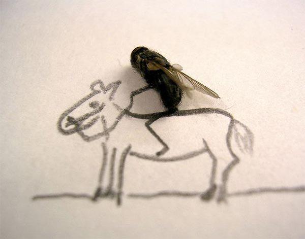dead_flies_art4